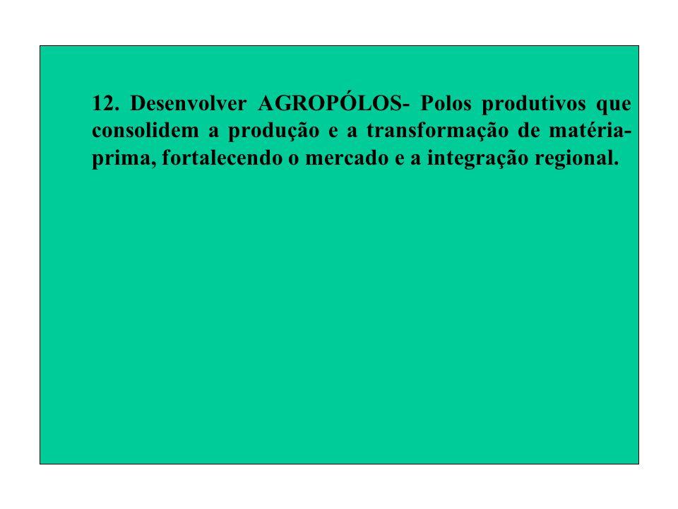 12. Desenvolver AGROPÓLOS- Polos produtivos que consolidem a produção e a transformação de matéria- prima, fortalecendo o mercado e a integração regio