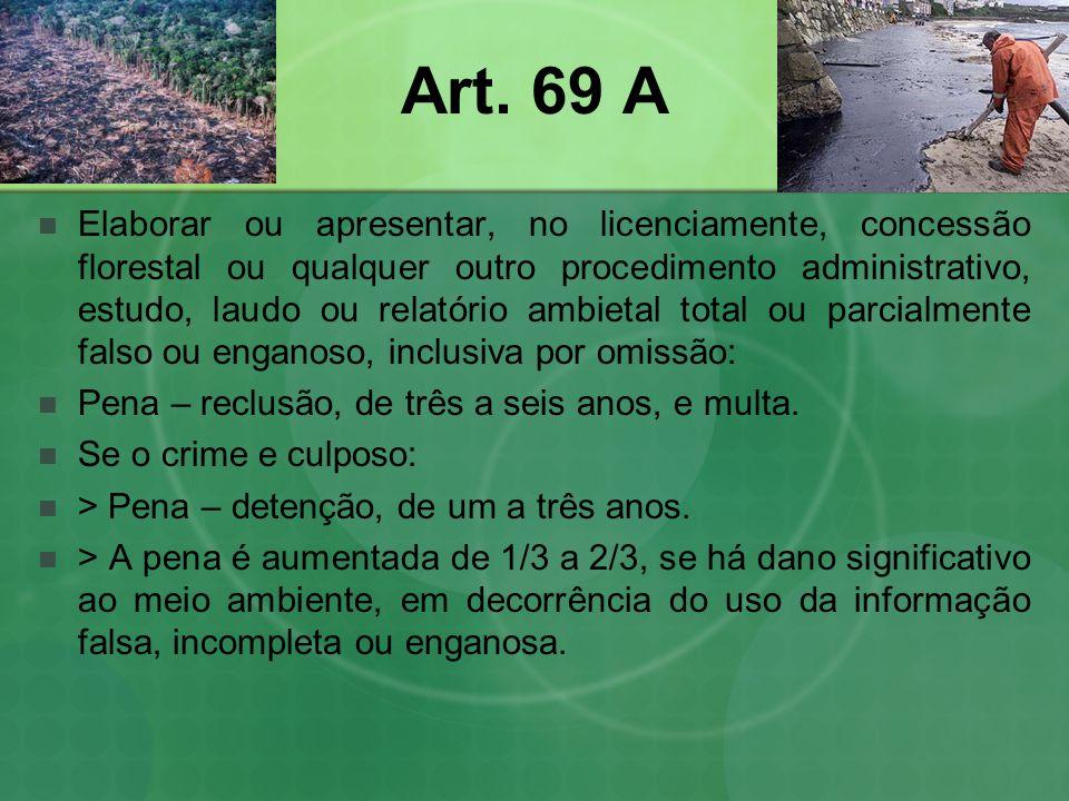 Art. 69 A Elaborar ou apresentar, no licenciamente, concessão florestal ou qualquer outro procedimento administrativo, estudo, laudo ou relatório ambi