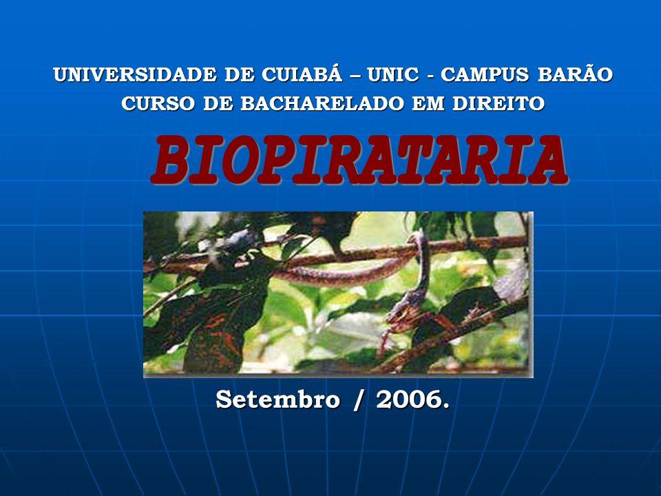UNIVERSIDADE DE CUIABÁ – UNIC - CAMPUS BARÃO CURSO DE BACHARELADO EM DIREITO Cuiabá - MT Setembro / 2006.