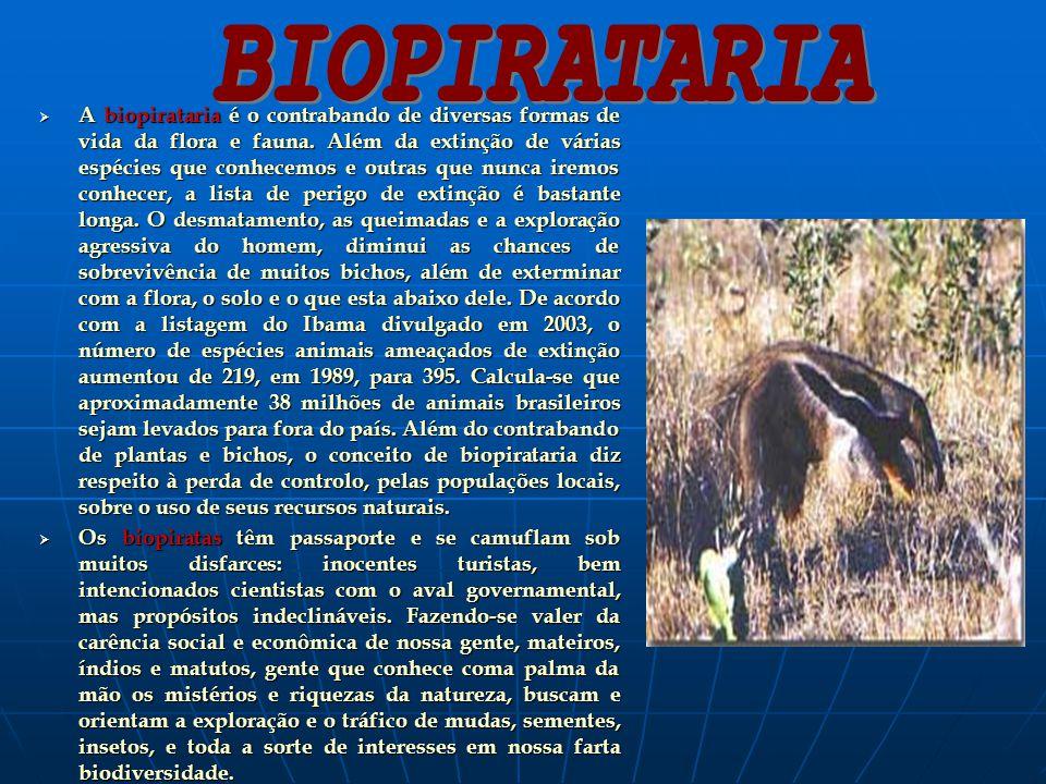 A biopirataria é o contrabando de diversas formas de vida da flora e fauna. Além da extinção de várias espécies que conhecemos e outras que nunca irem