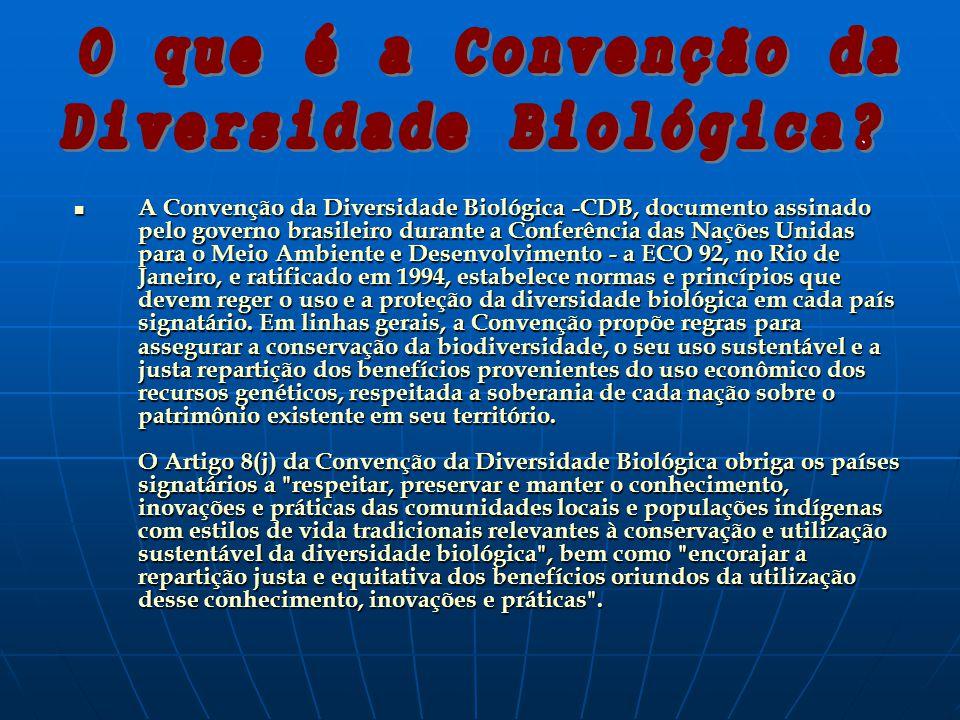 A Convenção da Diversidade Biológica -CDB, documento assinado pelo governo brasileiro durante a Conferência das Nações Unidas para o Meio Ambiente e Desenvolvimento - a ECO 92, no Rio de Janeiro, e ratificado em 1994, estabelece normas e princípios que devem reger o uso e a proteção da diversidade biológica em cada país signatário.