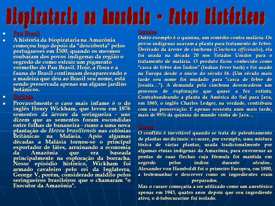 Pau Brasil Pau Brasil A historia da biopirataria na Amazônia começou logo depois da descoberta pelos portugueses em 1500, quando os mesmos roubaram dos povos indígenas da região o segredo de como extrair um pigmento vermelho do Pau Brasil.
