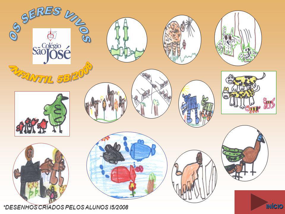 Demonstração dos grupos de anfíbios existentes: Anuro (sapos, rãs e pererecas), Caudata (salamandras) e Ápode (cobras-cegas).
