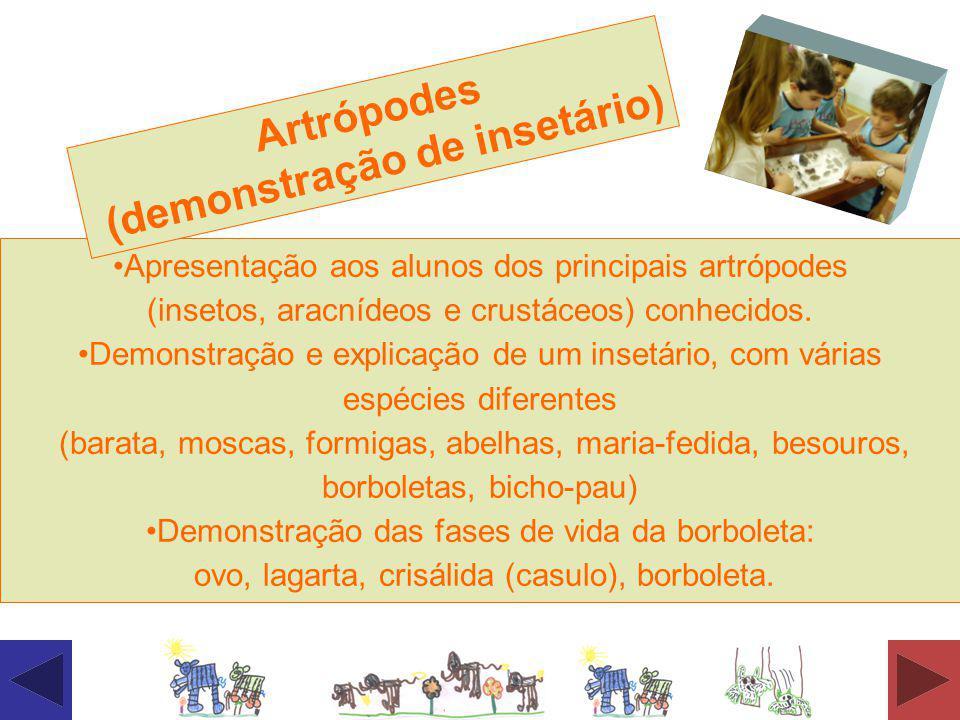 Apresentação aos alunos dos principais artrópodes (insetos, aracnídeos e crustáceos) conhecidos. Demonstração e explicação de um insetário, com várias