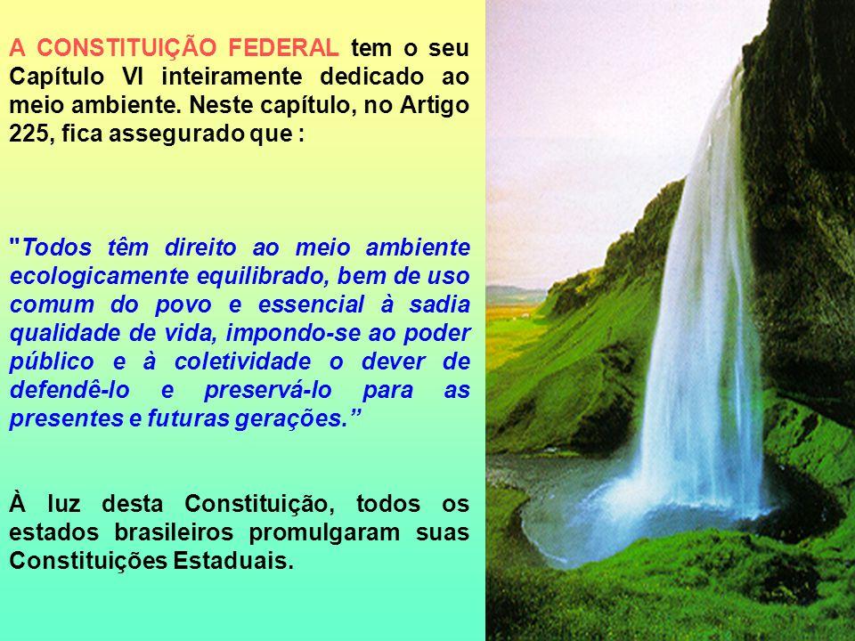 A LEI FEDERAL Nº 6.938 DE 31/08/1981 DISPÕE SOBRE A POLÍTICA NACIONAL DE MEIO AMBIENTE.