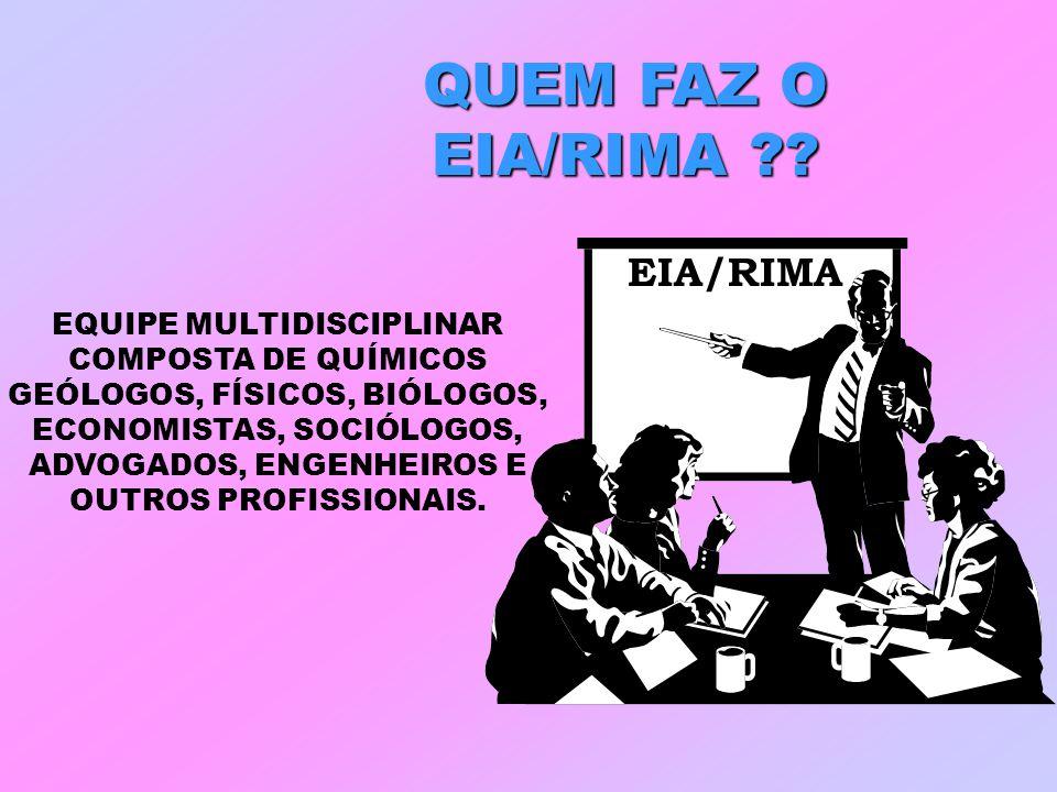 QUEM FAZ O EIA/RIMA ?? EQUIPE MULTIDISCIPLINAR COMPOSTA DE QUÍMICOS GEÓLOGOS, FÍSICOS, BIÓLOGOS, ECONOMISTAS, SOCIÓLOGOS, ADVOGADOS, ENGENHEIROS E OUT
