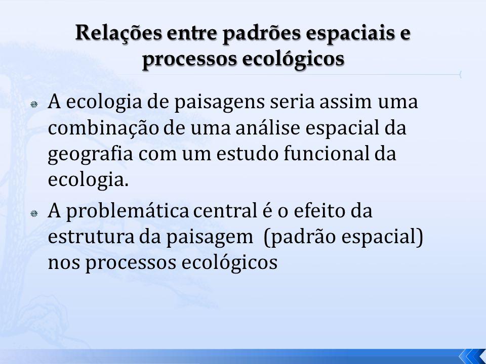 A ecologia de paisagens seria assim uma combinação de uma análise espacial da geografia com um estudo funcional da ecologia. A problemática central é