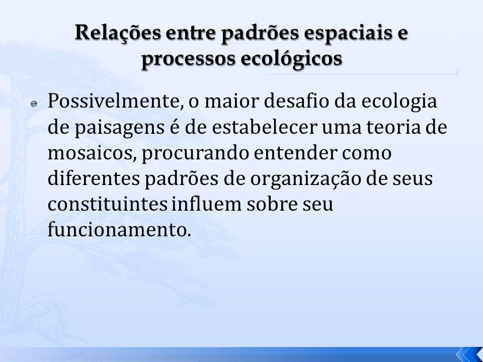 Possivelmente, o maior desafio da ecologia de paisagens é de estabelecer uma teoria de mosaicos, procurando entender como diferentes padrões de organi