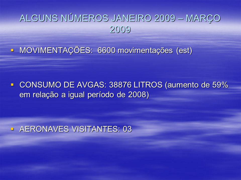 ALGUNS NÚMEROS JANEIRO 2009 – MARÇO 2009 MOVIMENTAÇÕES: 6600 movimentações (est) MOVIMENTAÇÕES: 6600 movimentações (est) CONSUMO DE AVGAS: 38876 LITRO