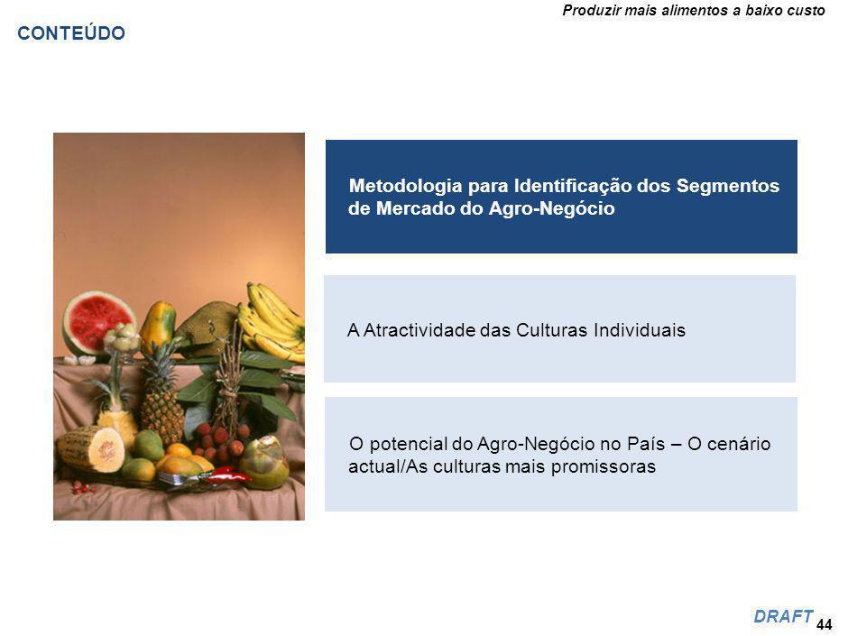 Produzir mais alimentos a baixo custo DRAFT 44 Metodologia para Identificação dos Segmentos de Mercado do Agro-Negócio A Atractividade das Culturas Individuais O potencial do Agro-Negócio no País – O cenário actual/As culturas mais promissoras CONTEÚDO