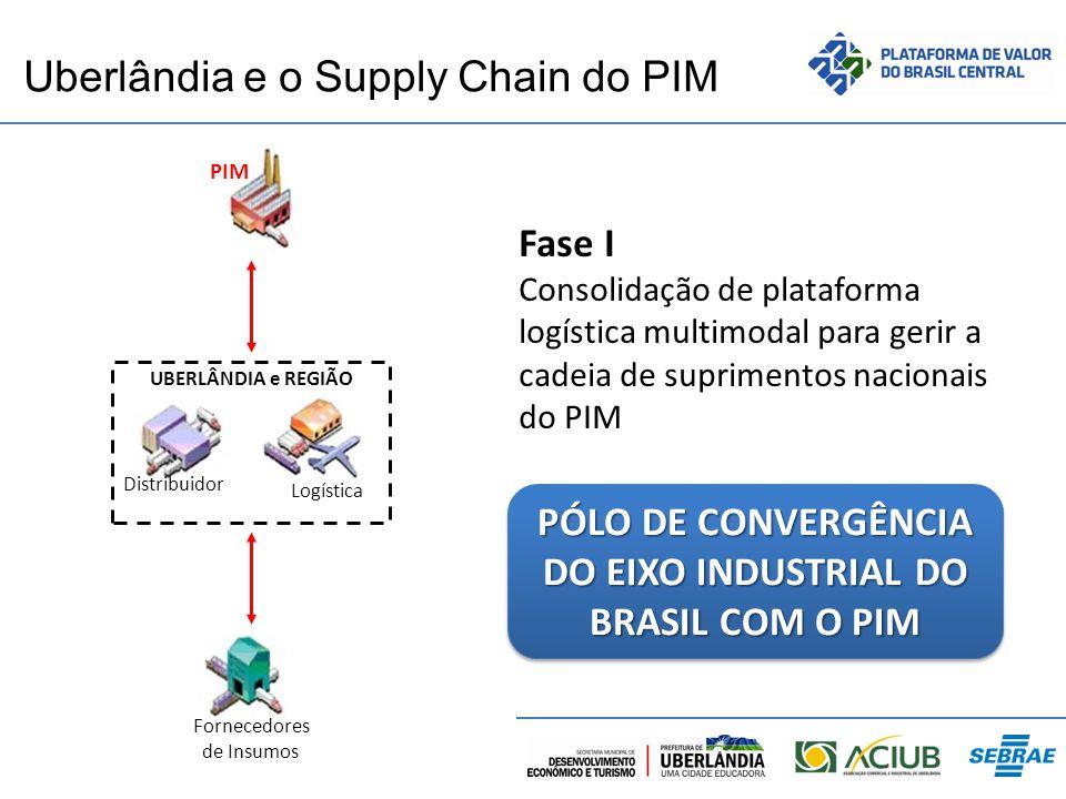 Uberlândia e o Supply Chain do PIM PIM Fornecedores de Insumos Distribuidor Logística UBERLÂNDIA e REGIÃO Fase I Consolidação de plataforma logística