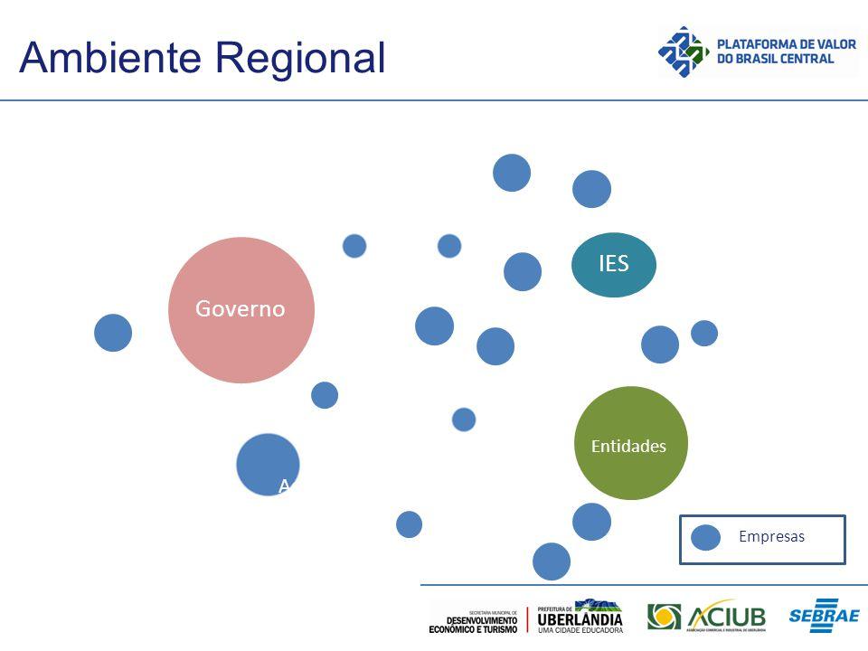 Ambiente Regional IES Governo Assoc. Entidades Empresas