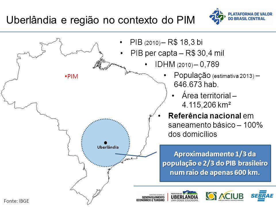 Uberlândia e região no contexto do PIM PIB (2010) – R$ 18,3 bi PIB per capta – R$ 30,4 mil IDHM (2010) – 0,789 População (estimativa 2013) – 646.673 h