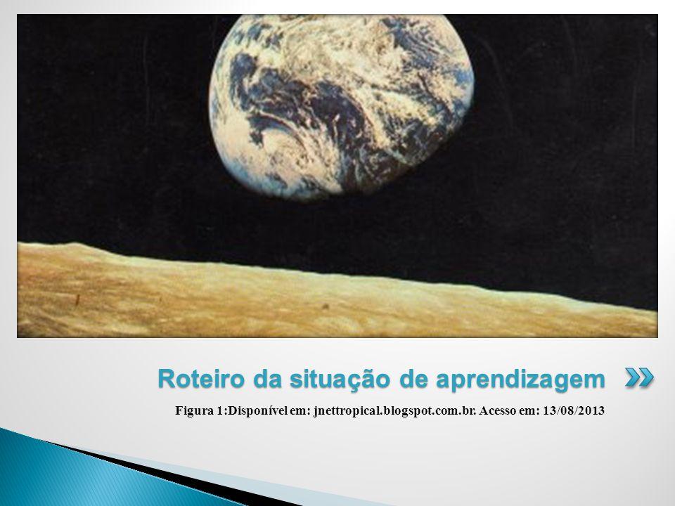 Figura 1:Disponível em: jnettropical.blogspot.com.br.