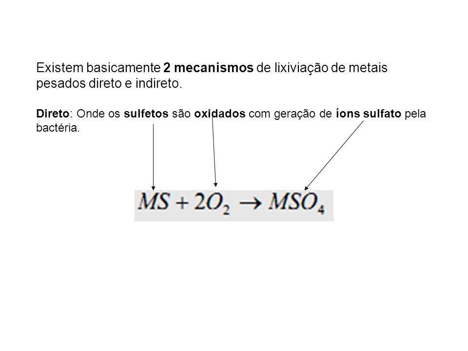 Existem basicamente 2 mecanismos de lixiviação de metais pesados direto e indireto. Direto: Onde os sulfetos são oxidados com geração de íons sulfato