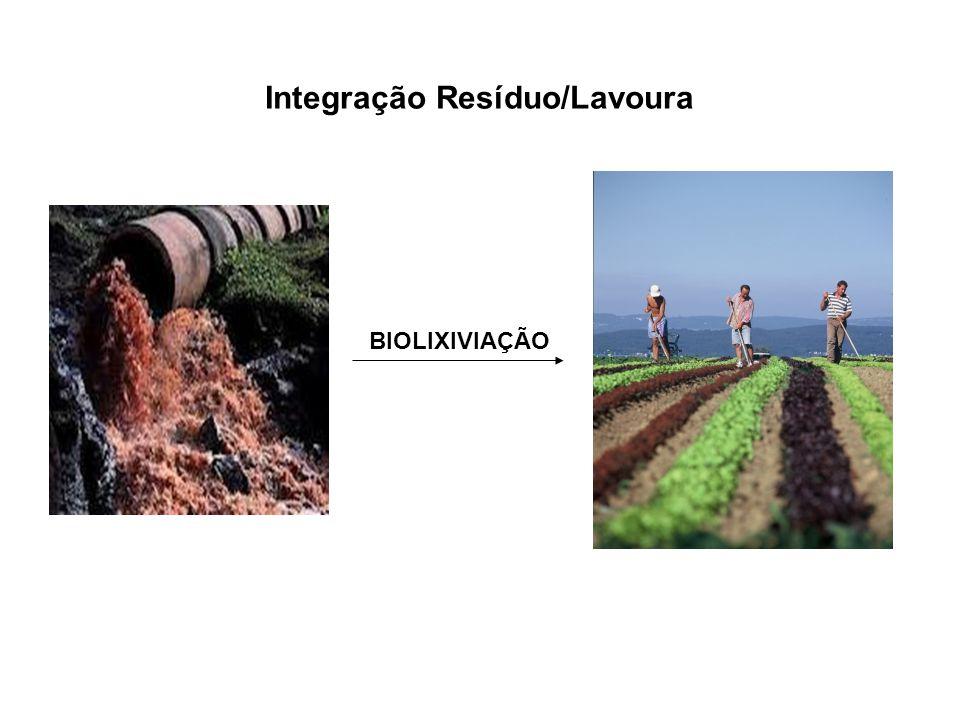 BIOLIXIVIAÇÃO Integração Resíduo/Lavoura