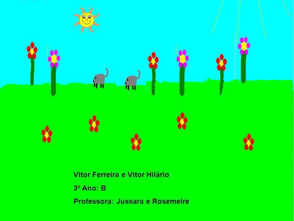 Vitor Ferreira e Vitor Hilário 3º Ano: B Professora: Jussara e Rosemeire