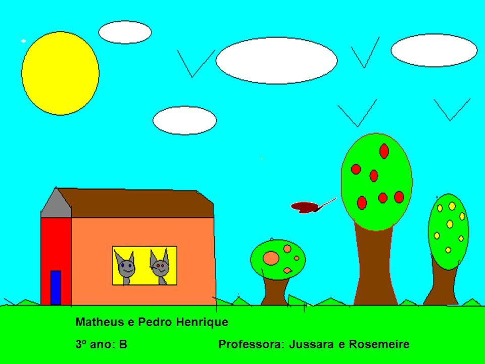 Matheus e Pedro Henrique 3º ano: B Professora: Jussara e Rosemeire