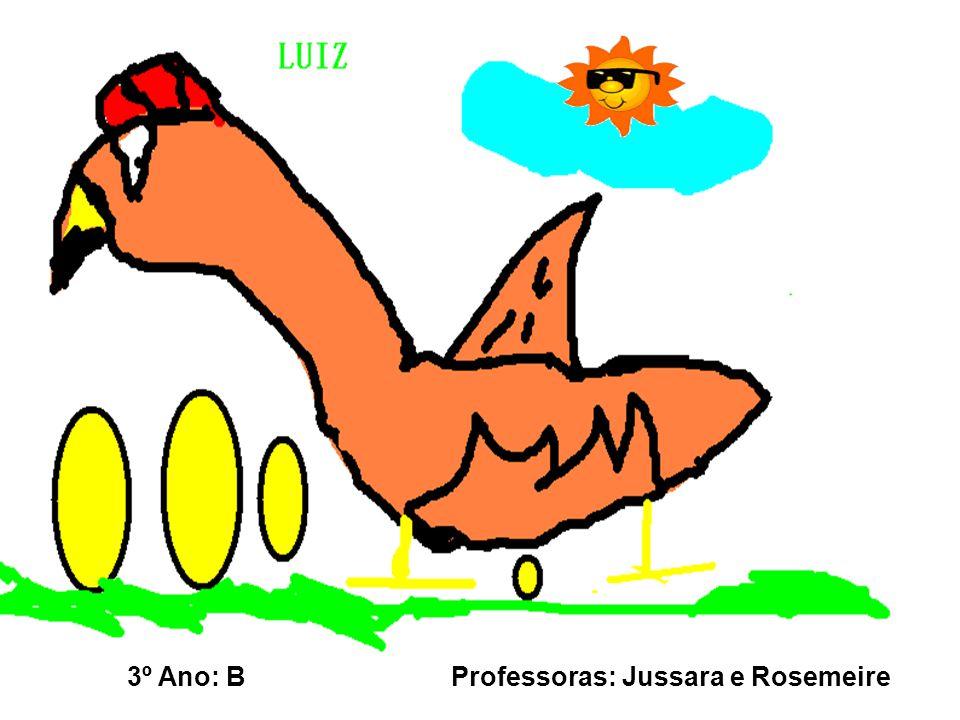 3º Ano: B Professoras: Jussara e Rosemeire