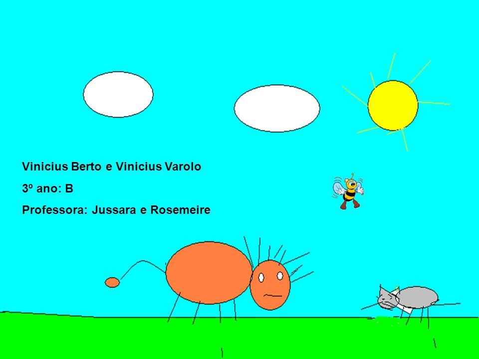 Vinicius Berto e Vinicius Varolo 3º ano: B Professora: Jussara e Rosemeire