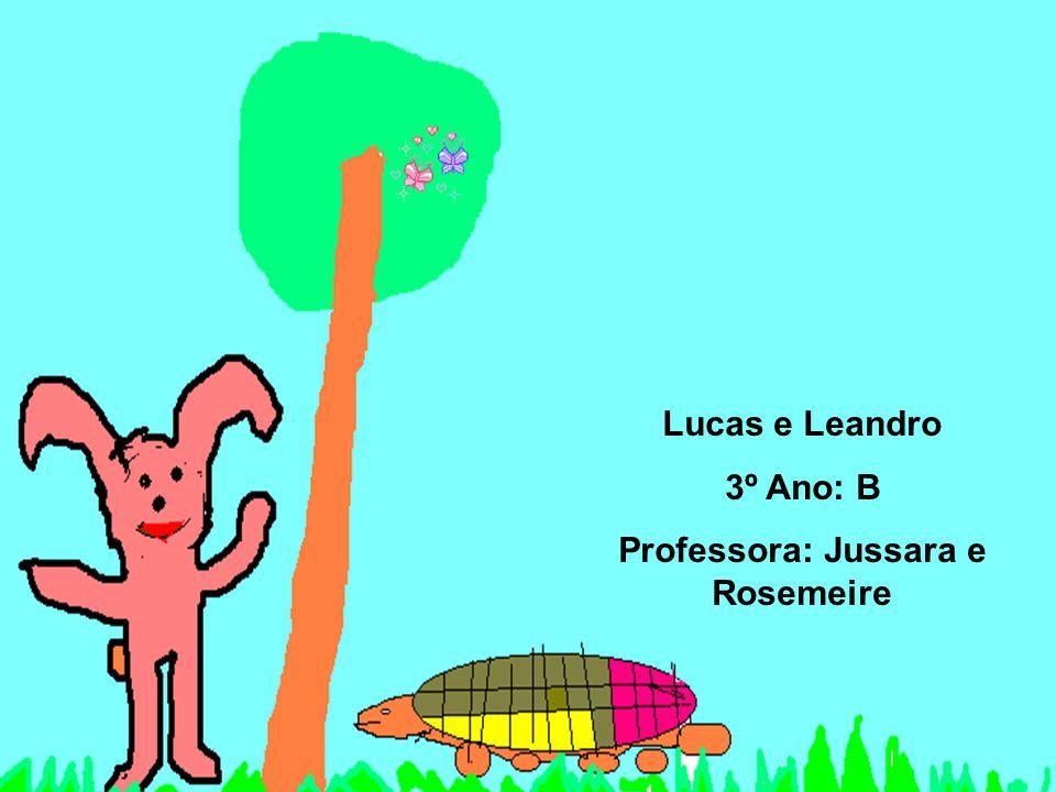 Lucas e Leandro 3º Ano: B Professora: Jussara e Rosemeire