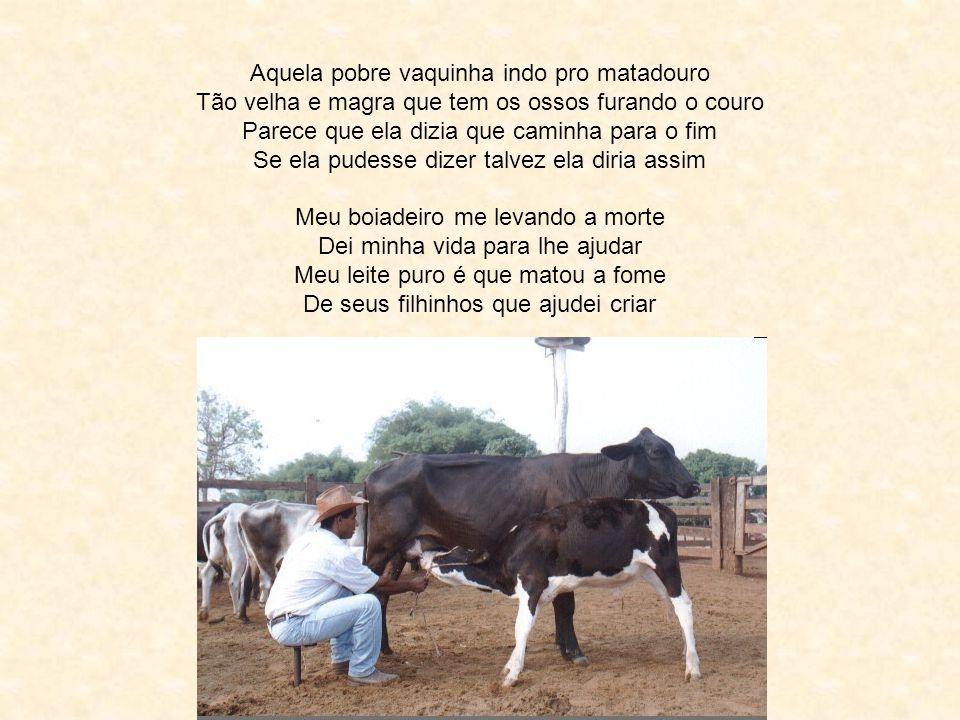 A Vaquinha Rildo Silveira Created by rildosilveira@yahoo.com.br Cruzília – MG – Brasil Música: Trio Parada Dura Henry David Thoreau Eu não tenho dúvid