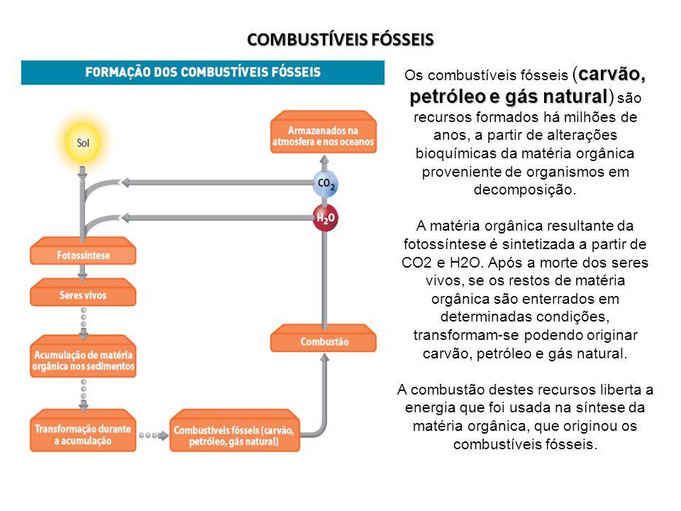 COMBUSTÍVEIS FÓSSEIS carvão, petróleo e gás natural Os combustíveis fósseis (carvão, petróleo e gás natural) são recursos formados há milhões de anos,