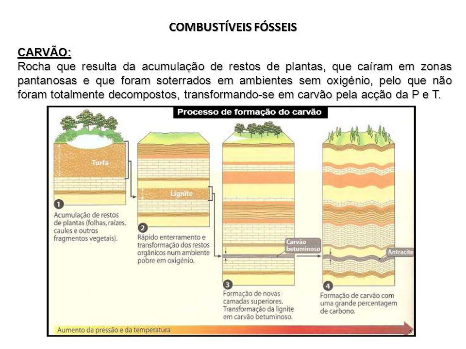 COMBUSTÍVEIS FÓSSEIS CARVÃO: Rocha que resulta da acumulação de restos de plantas, que caíram em zonas pantanosas e que foram soterrados em ambientes