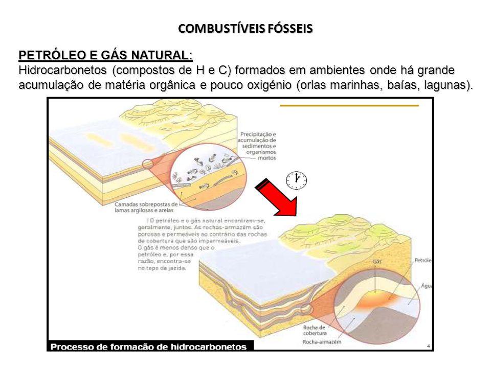 COMBUSTÍVEIS FÓSSEIS PETRÓLEO E GÁS NATURAL: Hidrocarbonetos (compostos de H e C) formados em ambientes onde há grande acumulação de matéria orgânica