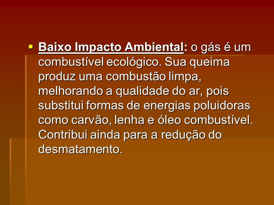 Baixo Impacto Ambiental: o gás é um combustível ecológico.