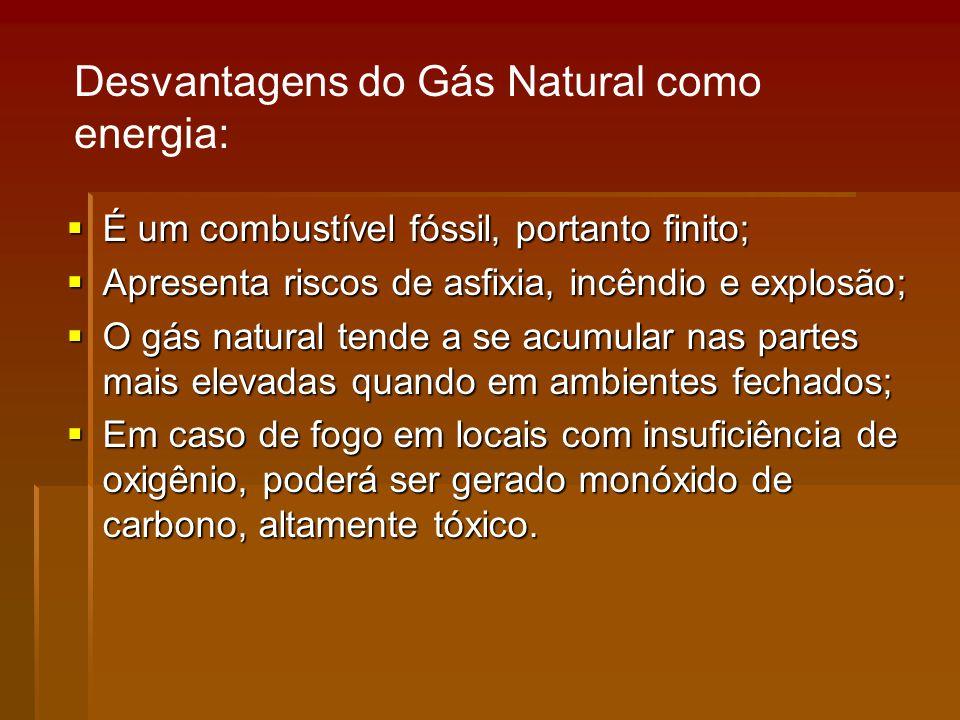 É um combustível fóssil, portanto finito; É um combustível fóssil, portanto finito; Apresenta riscos de asfixia, incêndio e explosão; Apresenta riscos de asfixia, incêndio e explosão; O gás natural tende a se acumular nas partes mais elevadas quando em ambientes fechados; O gás natural tende a se acumular nas partes mais elevadas quando em ambientes fechados; Em caso de fogo em locais com insuficiência de oxigênio, poderá ser gerado monóxido de carbono, altamente tóxico.