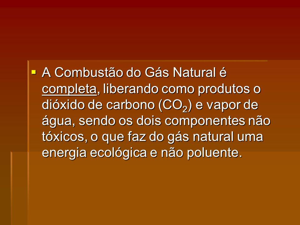 A Combustão do Gás Natural é completa, liberando como produtos o dióxido de carbono (CO 2 ) e vapor de água, sendo os dois componentes não tóxicos, o que faz do gás natural uma energia ecológica e não poluente.