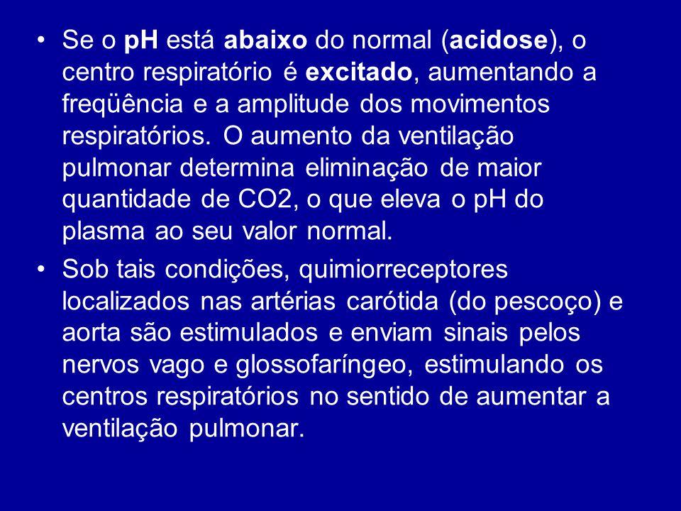 Se o pH está abaixo do normal (acidose), o centro respiratório é excitado, aumentando a freqüência e a amplitude dos movimentos respiratórios. O aumen