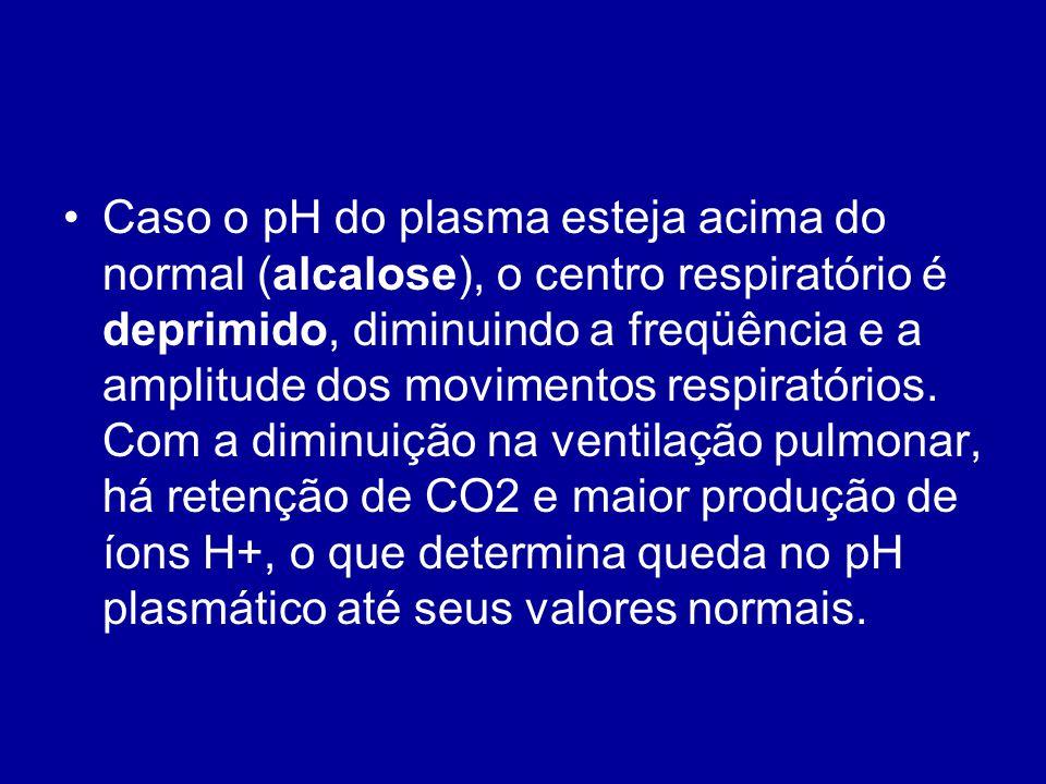 Caso o pH do plasma esteja acima do normal (alcalose), o centro respiratório é deprimido, diminuindo a freqüência e a amplitude dos movimentos respira