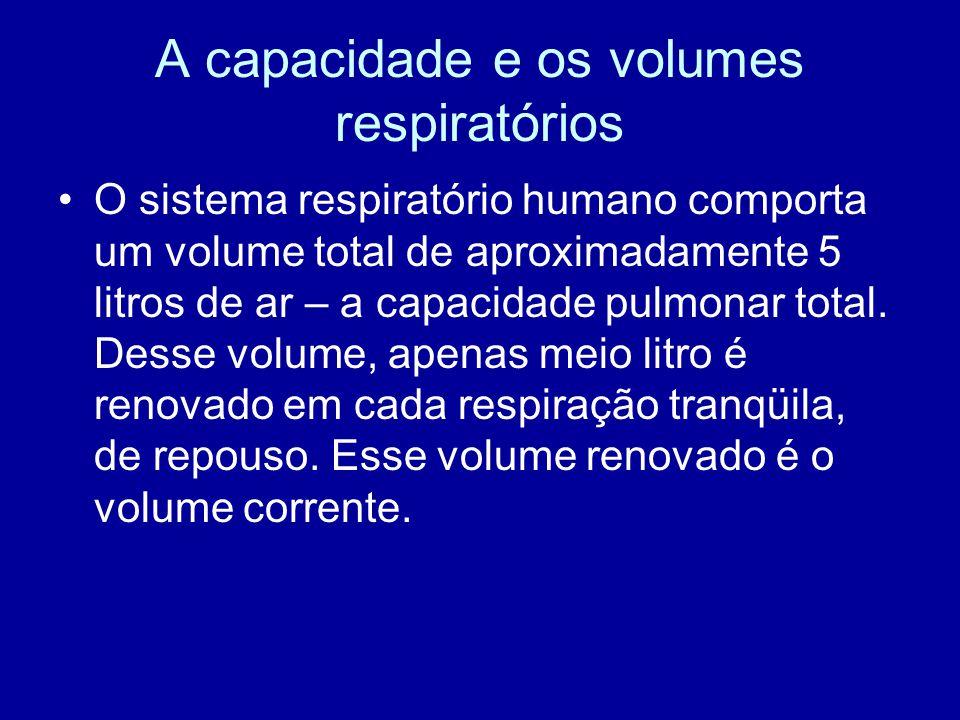 A capacidade e os volumes respiratórios O sistema respiratório humano comporta um volume total de aproximadamente 5 litros de ar – a capacidade pulmon
