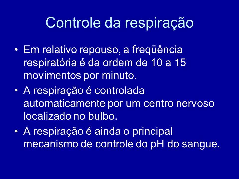 Controle da respiração Em relativo repouso, a freqüência respiratória é da ordem de 10 a 15 movimentos por minuto. A respiração é controlada automatic