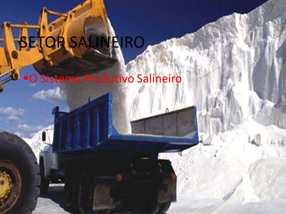 SETOR SALINEIRO O Sistema Produtivo Salineiro