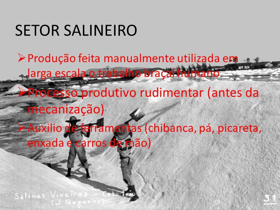 SETOR SALINEIRO Produção feita manualmente utilizada em larga escala o trabalho braçal humano Processo produtivo rudimentar (antes da mecanização) Auxilio de ferramentas (chibanca, pá, picareta, enxada e carros de mão)