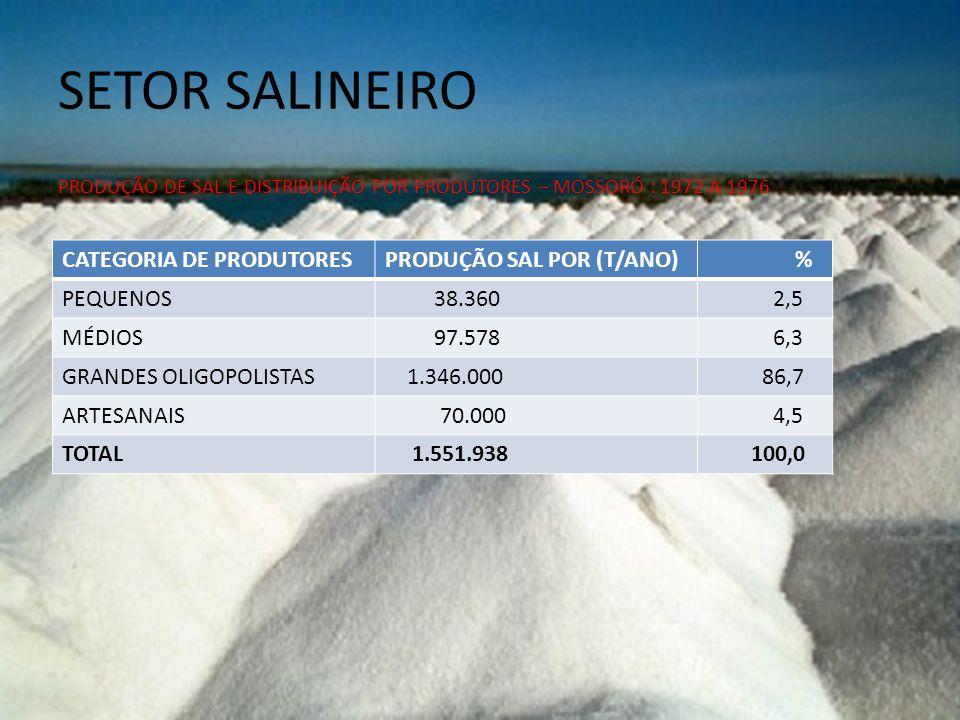 SETOR SALINEIRO PRODUÇÃO DE SAL E DISTRIBUIÇÃO POR PRODUTORES – MOSSORÓ : 1972 A 1976 CATEGORIA DE PRODUTORESPRODUÇÃO SAL POR (T/ANO) % PEQUENOS 38.360 2,5 MÉDIOS 97.578 6,3 GRANDES OLIGOPOLISTAS 1.346.000 86,7 ARTESANAIS 70.000 4,5 TOTAL 1.551.938 100,0