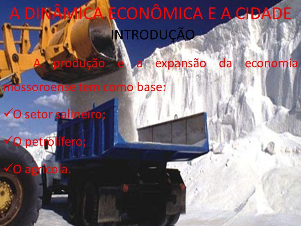 INTRODUÇÃO A DINÂMICA ECONÔMICA E A CIDADE A produção e a expansão da economia mossoroense tem como base: O setor salineiro; O petrolífero; O agrícola.