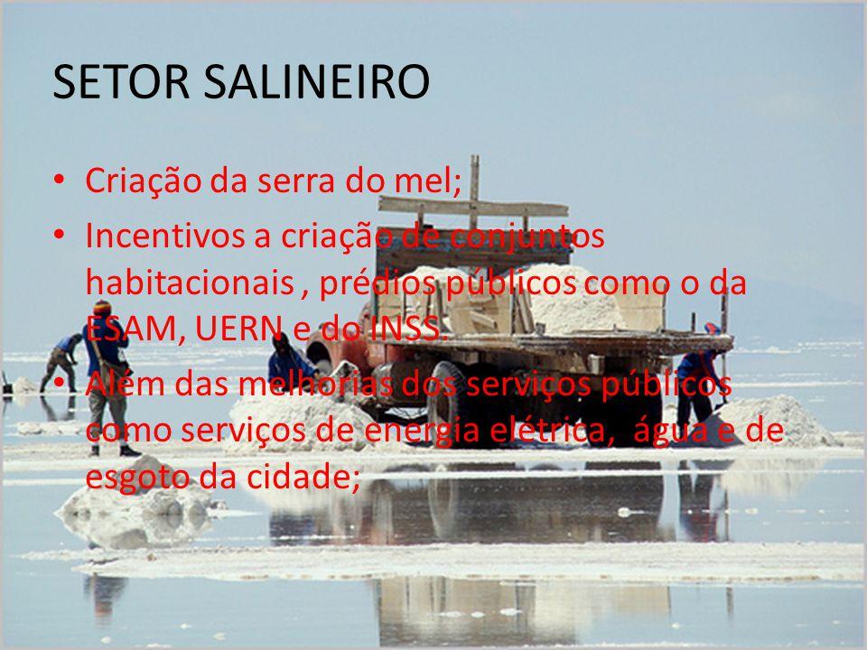 SETOR SALINEIRO Criação da serra do mel; Incentivos a criação de conjuntos habitacionais, prédios públicos como o da ESAM, UERN e do INSS.