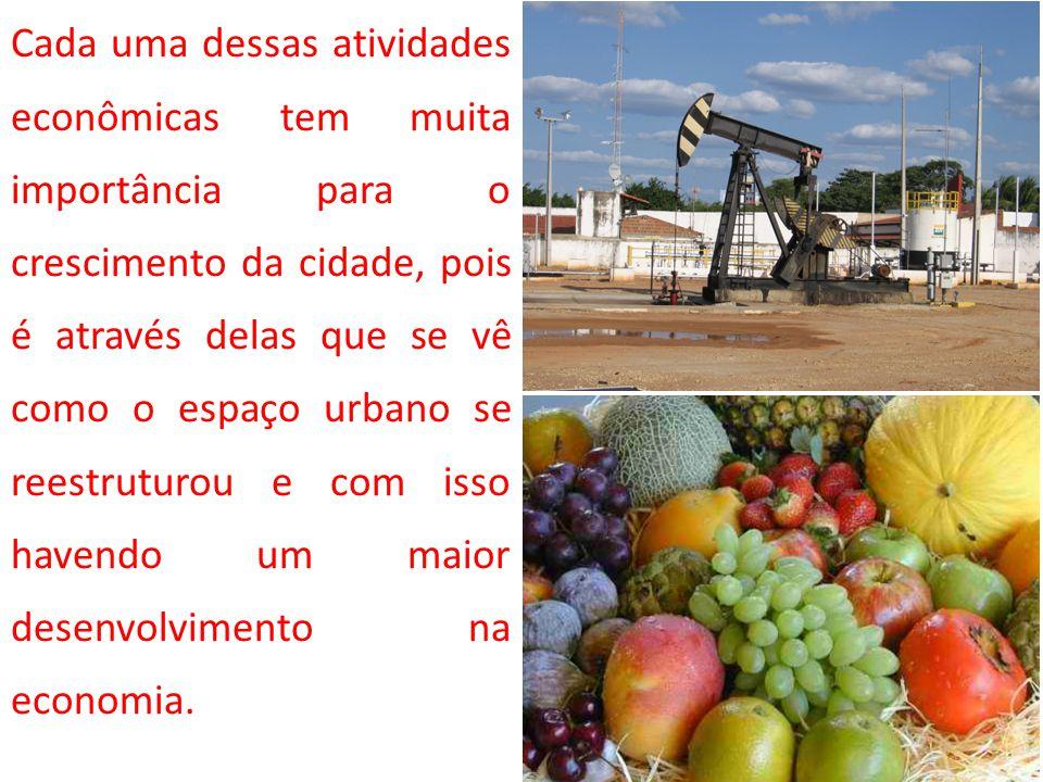SETOR SALINEIRO Problemas devido a mecanização Desemprego em massa; Domínio das salinas por grupos estrangeiros; Levando a concentração da produção de sal na mão desses grupos.