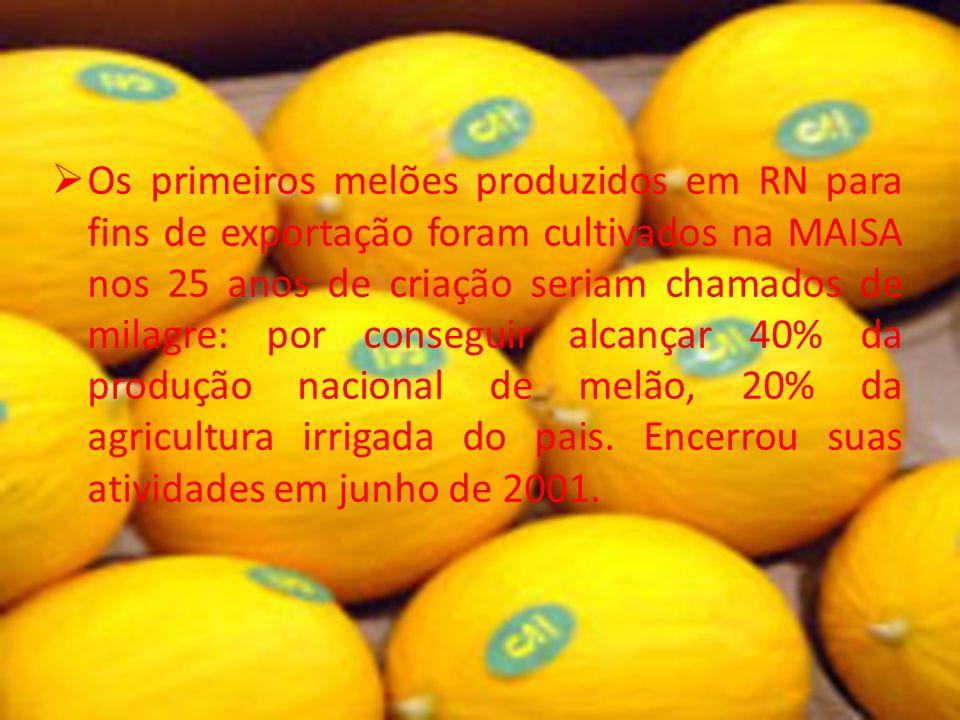Os primeiros melões produzidos em RN para fins de exportação foram cultivados na MAISA nos 25 anos de criação seriam chamados de milagre: por conseguir alcançar 40% da produção nacional de melão, 20% da agricultura irrigada do pais.