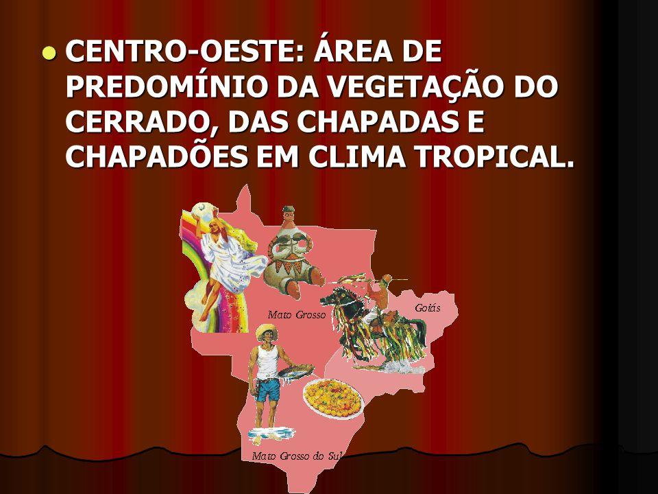 CENTRO-OESTE: ÁREA DE PREDOMÍNIO DA VEGETAÇÃO DO CERRADO, DAS CHAPADAS E CHAPADÕES EM CLIMA TROPICAL.