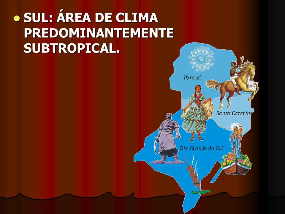 SUL: ÁREA DE CLIMA PREDOMINANTEMENTE SUBTROPICAL. SUL: ÁREA DE CLIMA PREDOMINANTEMENTE SUBTROPICAL.