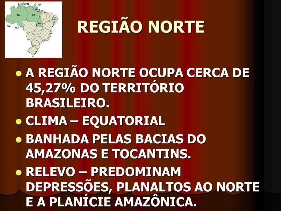 REGIÃO NORTE A REGIÃO NORTE OCUPA CERCA DE 45,27% DO TERRITÓRIO BRASILEIRO. A REGIÃO NORTE OCUPA CERCA DE 45,27% DO TERRITÓRIO BRASILEIRO. CLIMA – EQU