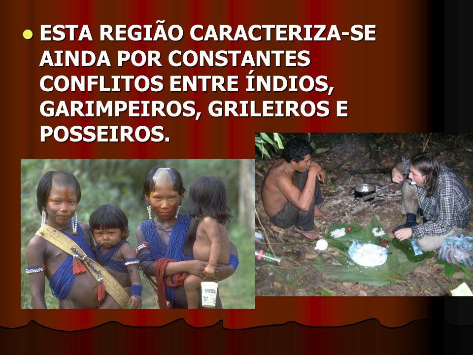 ESTA REGIÃO CARACTERIZA-SE AINDA POR CONSTANTES CONFLITOS ENTRE ÍNDIOS, GARIMPEIROS, GRILEIROS E POSSEIROS. ESTA REGIÃO CARACTERIZA-SE AINDA POR CONST