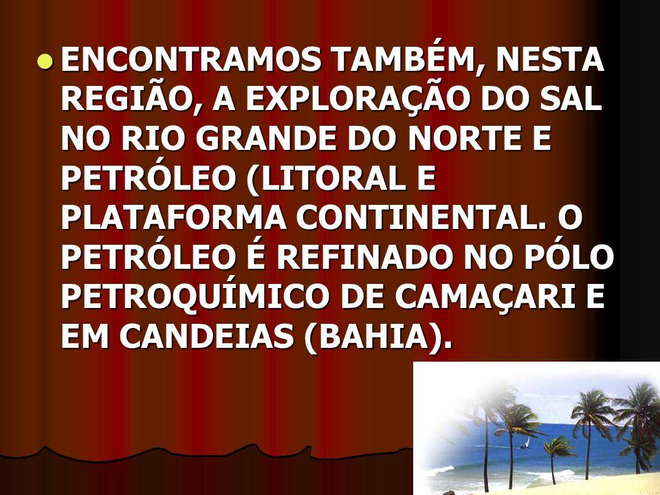 ENCONTRAMOS TAMBÉM, NESTA REGIÃO, A EXPLORAÇÃO DO SAL NO RIO GRANDE DO NORTE E PETRÓLEO (LITORAL E PLATAFORMA CONTINENTAL. O PETRÓLEO É REFINADO NO PÓ