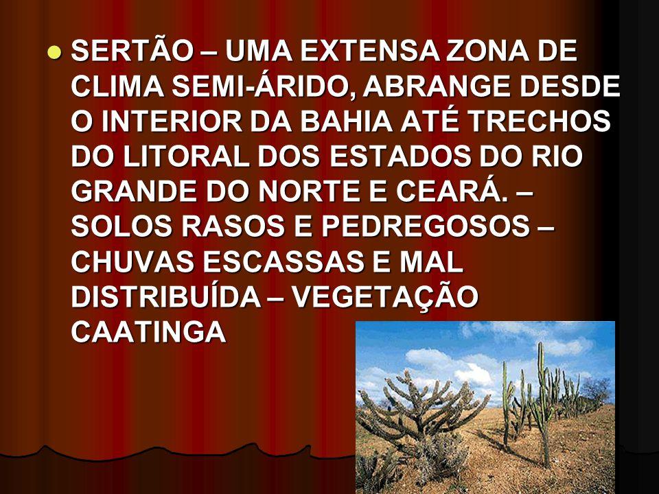 SERTÃO – UMA EXTENSA ZONA DE CLIMA SEMI-ÁRIDO, ABRANGE DESDE O INTERIOR DA BAHIA ATÉ TRECHOS DO LITORAL DOS ESTADOS DO RIO GRANDE DO NORTE E CEARÁ. –