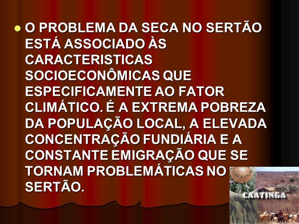 O PROBLEMA DA SECA NO SERTÃO ESTÁ ASSOCIADO ÀS CARACTERISTICAS SOCIOECONÔMICAS QUE ESPECIFICAMENTE AO FATOR CLIMÁTICO.